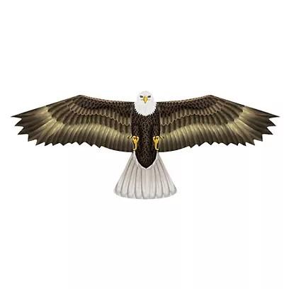 X-Kites Birds Of Prey, 122x50cm-Motivdrachen